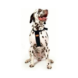 RAC Dog Car Harness