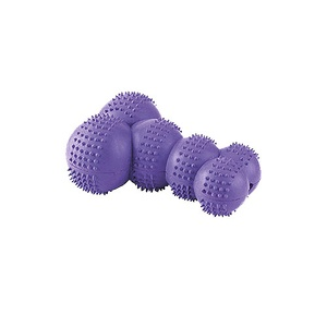 Gor Rubber Super Giggle Bone Toy - Purple