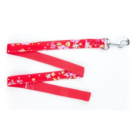 Red Vintage Dog Lead