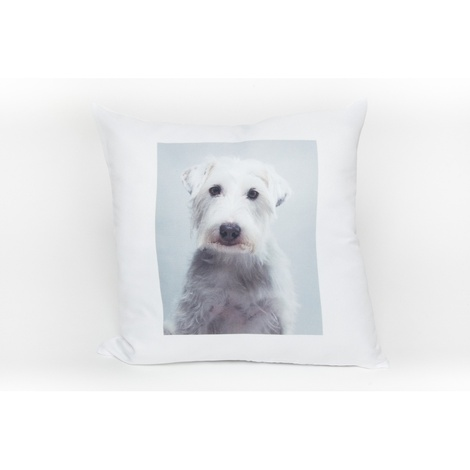Personalised Pet Pillow