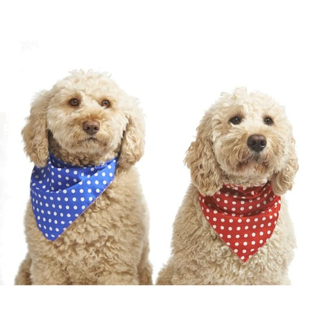 Polka Dot Dog Bandana - Red  5
