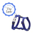 Plain Dog Harness - Blue