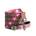 Leopard LED Dog Lead