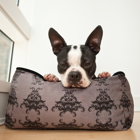 Royal Crest Lounge Dog Bed 4