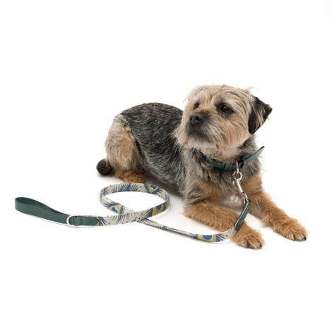 Peacock Linen and Leather Dog Lead