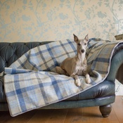 The Lounging Hound - Waterproof Wool Throw - Azure