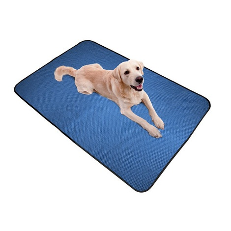 Pet Cooling Blanket in Pacific Blue