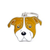 My Family - American Staffordshire Bull Terrier Engraved ID Tag
