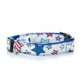 "Star Gaze Dog Collar 1"" Width"