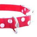 White Dots on Red Dog Collar 4