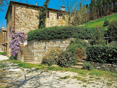 Frantoio 1, Florence