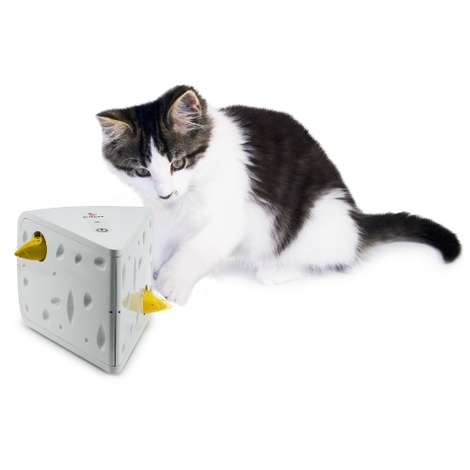 PetSafe® FroliCat™ CHEESE™ Automatic Cat Teaser 3