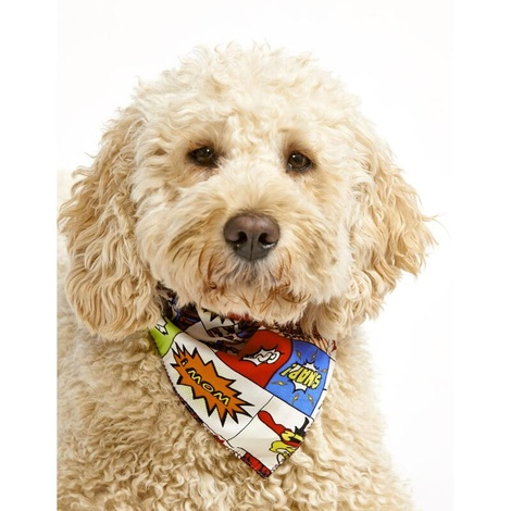 Cartoon Dog Bandana