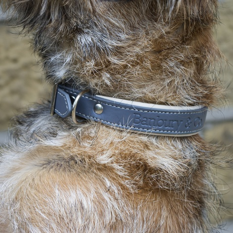 Luxury Dog Collar & Lead Set 2