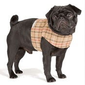 Mutts & Hounds - Balmoral Tweed Dog Harness