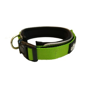 Liopard Padded Nylon Dog Collar – Lime
