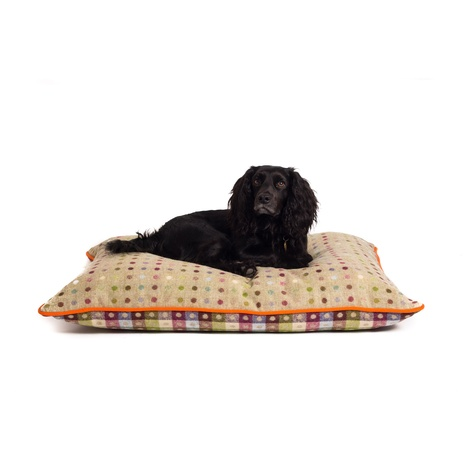 Luxury Pure Wool Dog Bed - Pistachio Multispot