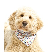 Pet Pooch Boutique - Multi Stars Dog Bandana