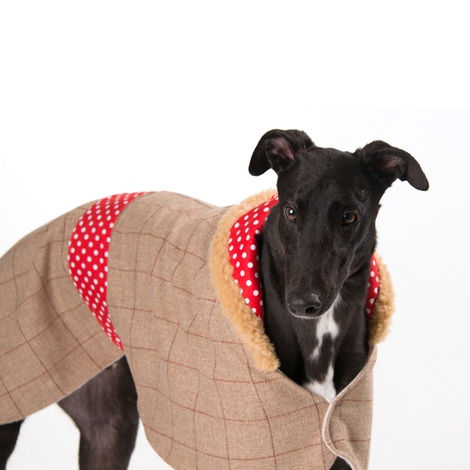Barnaby Sighthound Tweed Coat 2