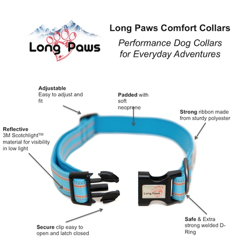 Comfort Padded Dog Collar – Blue 3