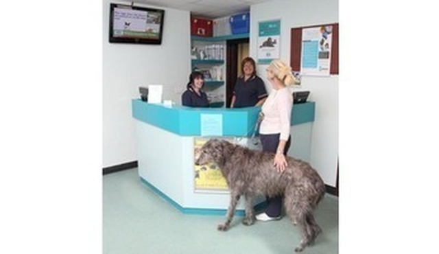 Heath Veterinary Group