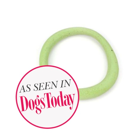 BecoHoop Dog Toy - Green