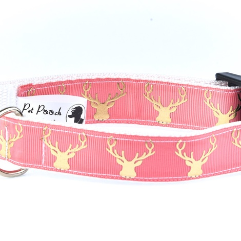 Country Stag On Blush Coral Collar