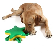 Outward Hound - Star Spinner Interactive Treat Game