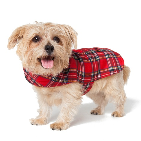 Personalised Red Tartan Dog Coat 3