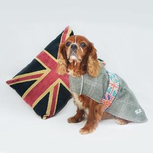 Jasper Tweed Dog Coat