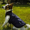 Chelsea Winter Warmer Dog Coat - Blue 3