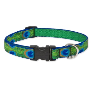 Tail Feathers Lupine Dog Collar