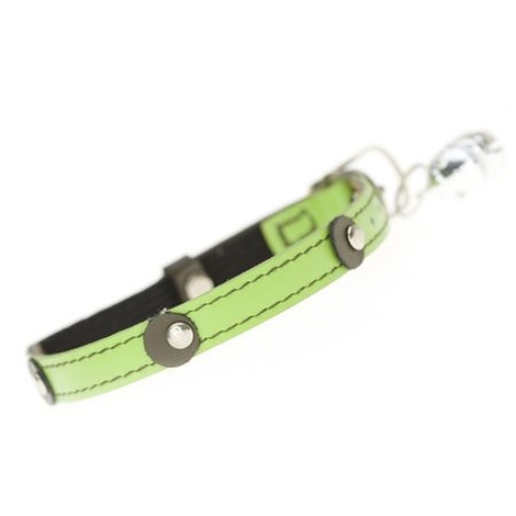 Moet Cat Collar in lime