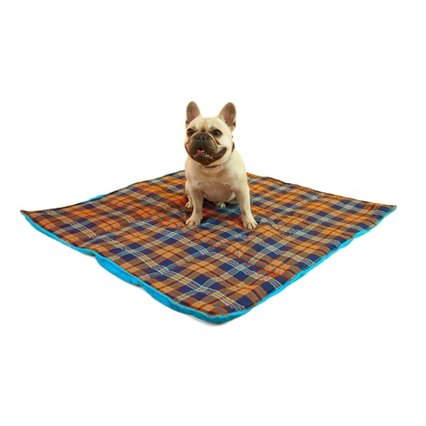 Henry Holland Blue Tartan Dog Blanket