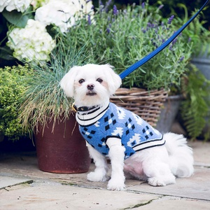 Shop our collection of stylish wool and cashmere dog jumpers to keep your pooch warm this winter.
