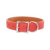 Auburn Leathercrafters - Tuscany Leather Dog Collar – Orange