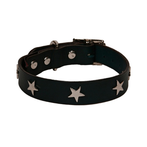 Black Leather Dog Collar with Star Studs
