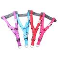 Padded Bold Harness - Purple 2