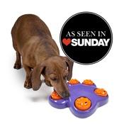 Outward Hound - Mini Paw Hide Treat Hiding Interactive Dog Game