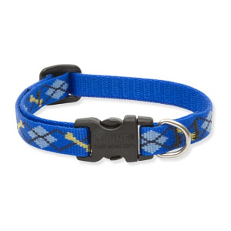 Dapper Dog Lupine Dog Collar