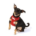 Airmesh Dog Harness – Red 5