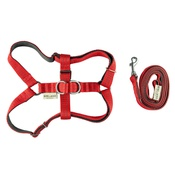 Bowl&Bone Republic - Active Dog Harness & Lead Set - Red
