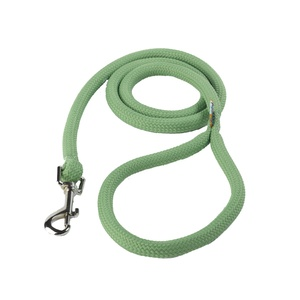 Braided Dog Lead – Spring Green