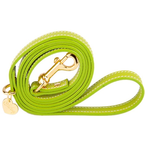 Green and Gold Luxury Leather Lead