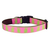 Woof and Meow - Pups For Peace Collar