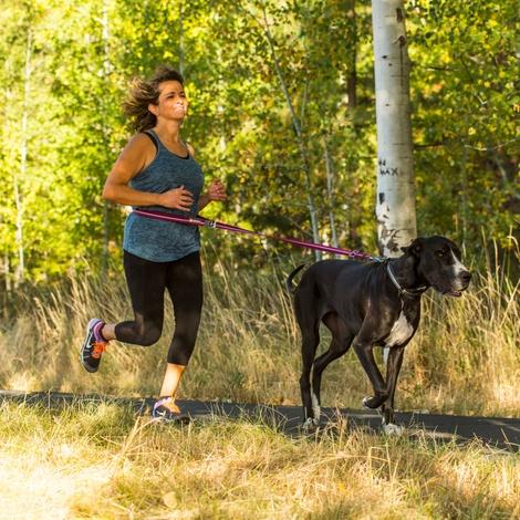 Slackline Dog Lead – Purple Dusk 7