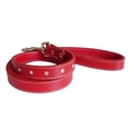 Diamante Red Leash