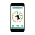 Wonderwoof Bow Tie Activity Tracker – Teal 6