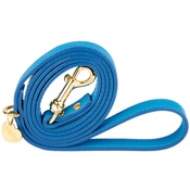 Chihuy - Heavenly Blue and Gold Luxury Leather Lead