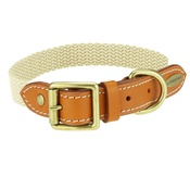 Clementine est. Dogs - Astor Webbing Dog Collar – Orange